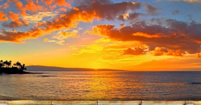 Open Your Heart in Paradise Maui Retreat with Ram Dass, Krishna Das Friends